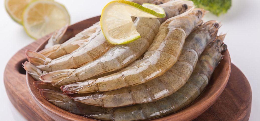 南美白对虾的养殖生物学特点