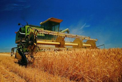 明年全球农机市场将增长5%