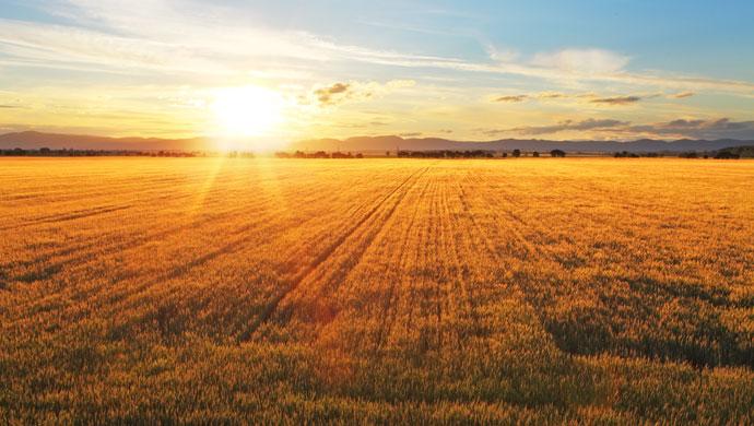 史上最全互联网+农业市场研究:中美日差距在哪?